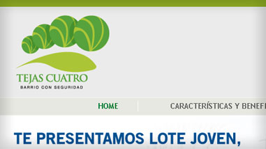 lote_joven